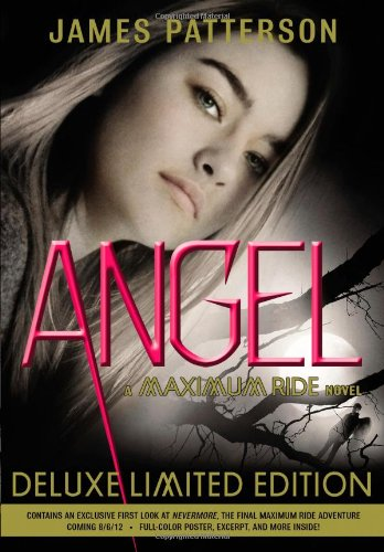 Book Cover of Angel