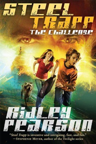 Book Cover of The Challenge