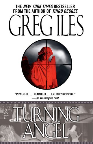Book cover of Turning Angel