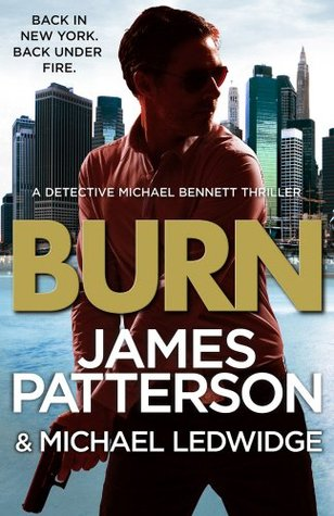Book cover of Burn